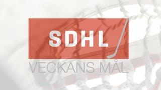 Veckans mål SDHL